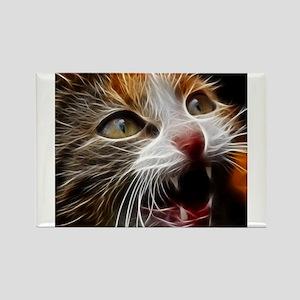 Cat011 Magnets