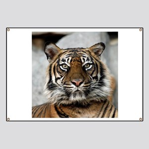 Tiger009 Banner