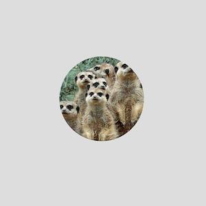 Meerkat012 Mini Button