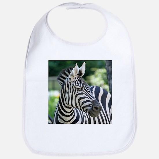 Zebra 001 Bib