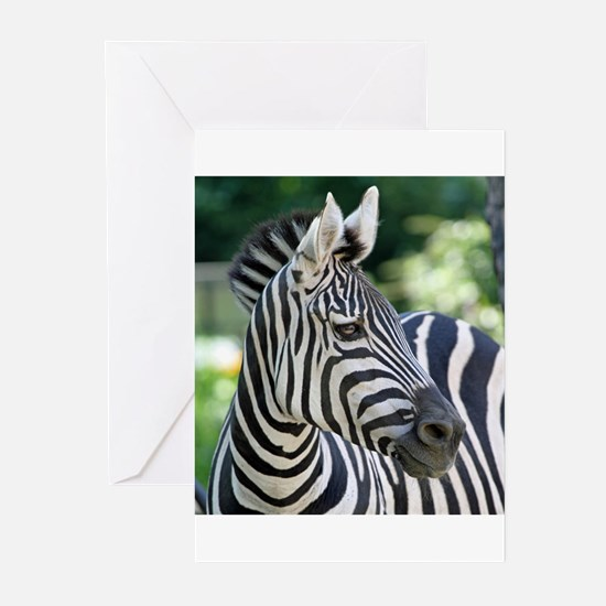 Zebra 001 Greeting Cards