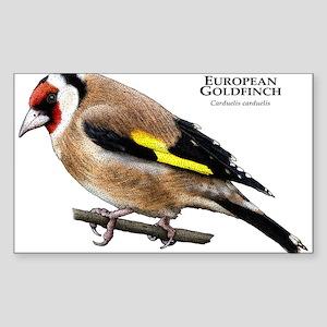 European Goldfinch Sticker (Rectangle)