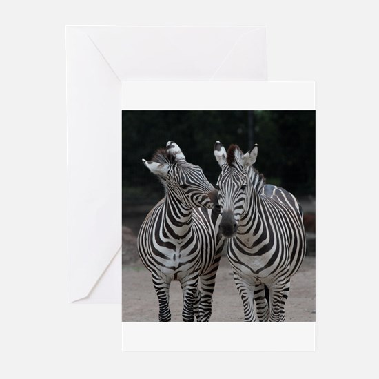 Zebra005 Greeting Cards
