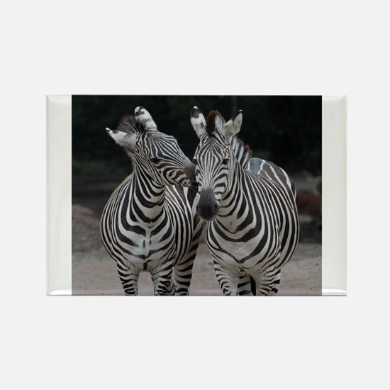 Zebra005 Magnets