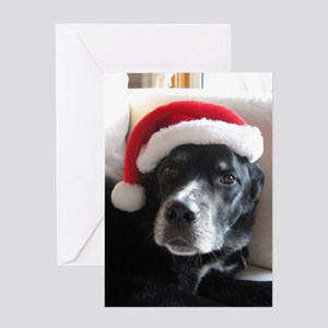 Santa Dog Greeting Cards