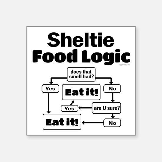 "Sheltie Food Square Sticker 3"" x 3"""