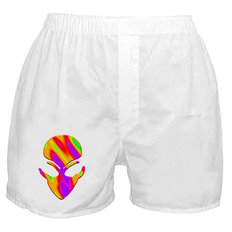 Static 13 Boxer Shorts