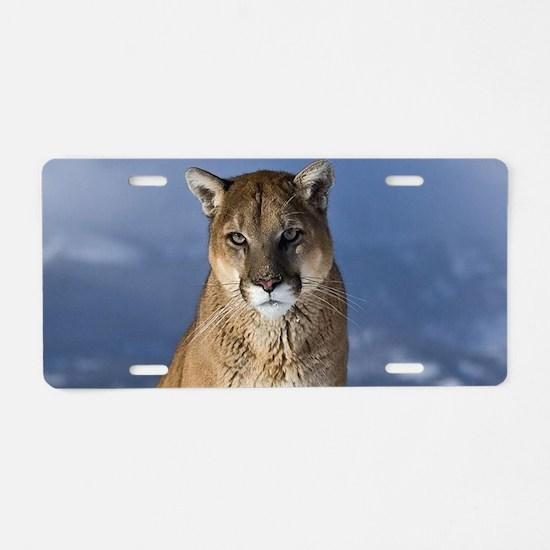 Puma During Winter Aluminum License Plate