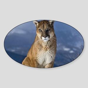 Puma During Winter Sticker