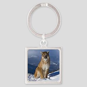 Puma During Winter Keychains