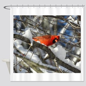 Snow Cardinal Shower Curtain