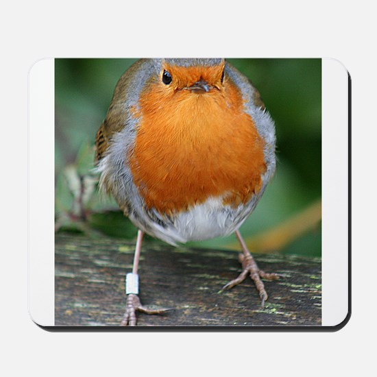 The Red Red Robin Mousepad