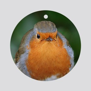 The Red Red Robin Round Ornament