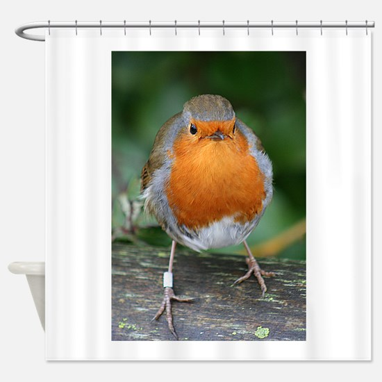 The Red Red Robin Shower Curtain