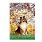 Spring / Sheltie (#1) Postcards (Package of 8)
