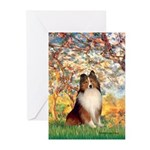 Spring / Sheltie (#1) Greeting Cards (Pk of 10)