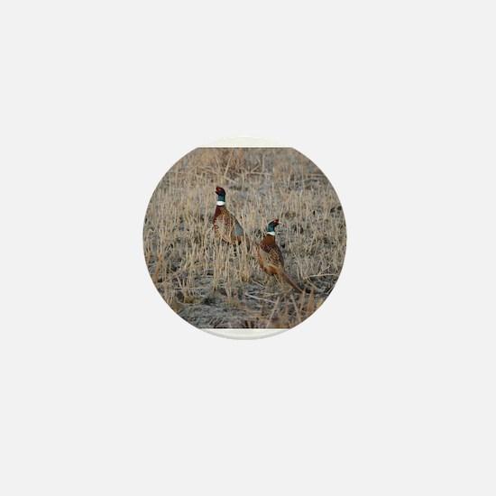 Pheasants Mini Button