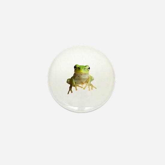Cute Frog Mini Button