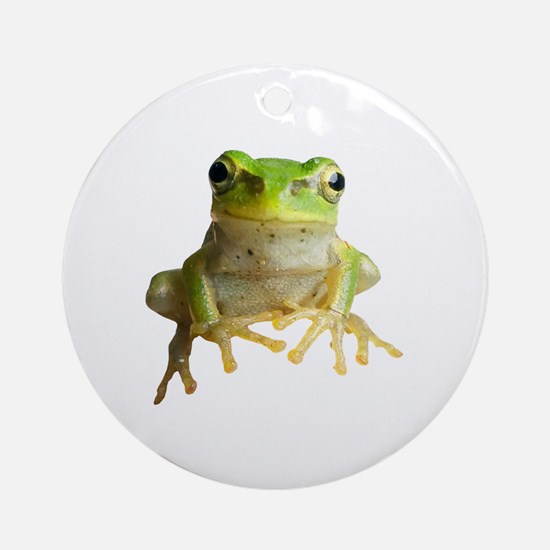 Cute Tree frog Round Ornament