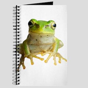 Pyonkichi the Frog Journal