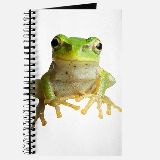 Pyonkichi the Frog Journal