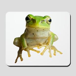 Pyonkichi the Frog Mousepad