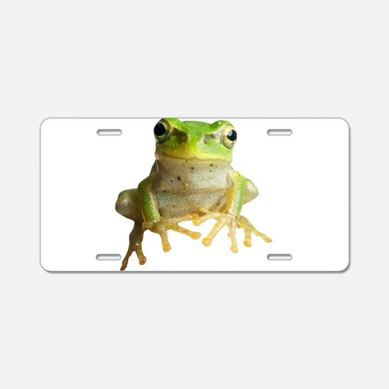 Pyonkichi the Frog Aluminum License Plate