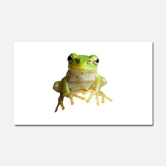 Pyonkichi the Frog Car Magnet 20 x 12