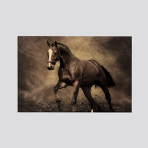 Beautiful Brown Horse Magnets
