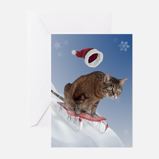 Funny Sled Greeting Cards (Pk of 10)
