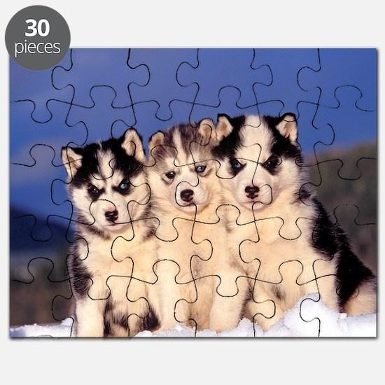 Three Husky puppies Puzzle