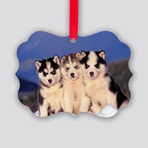 Three Husky puppies Picture Ornament