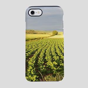 Camino green field iPhone 8/7 Tough Case
