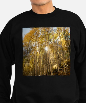 Aspens and Sunshine Sweatshirt (dark)