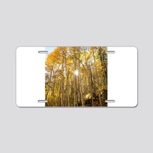 Aspens and Sunshine Aluminum License Plate