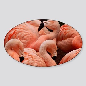 Pink flamingos Sticker