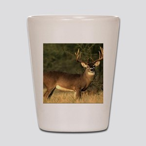 Beautiful Buck Shot Glass