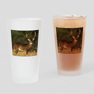 Beautiful Buck Drinking Glass