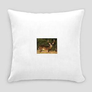 Beautiful Buck Everyday Pillow