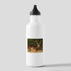 Beautiful Buck Stainless Water Bottle 1.0L