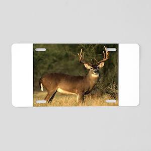 Beautiful Buck Aluminum License Plate