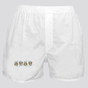 Jack Russell Puppies! Boxer Shorts