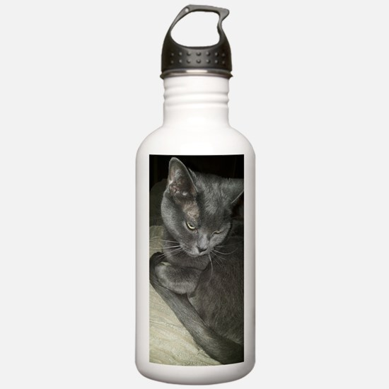 Unique Blue cat Water Bottle