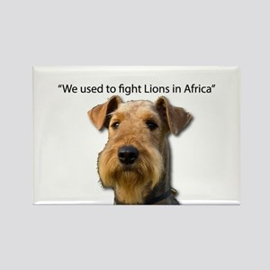 Airedales used to Fight Lions in Africa wi Magnets