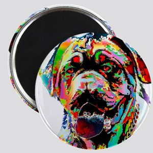 Colorful Bulldog Magnets