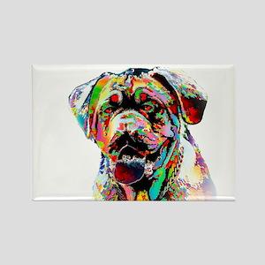 Colorful Bulldog Magnets