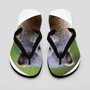 Marmot Flip Flops