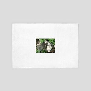 mother opossum in garden with babies f 4' x 6' Rug