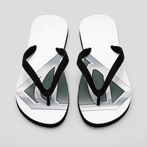 spr_dad_chrm Flip Flops
