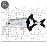 Campylomormyrus Elephantfish Puzzle